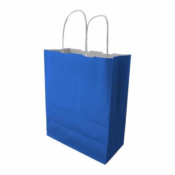Kağıt Çanta Burgu Saplı Mavi Renk 32x40x12 cm